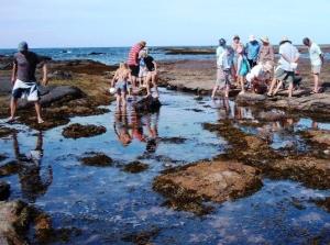 Reef walk photo